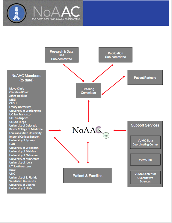 NoAAC Structure